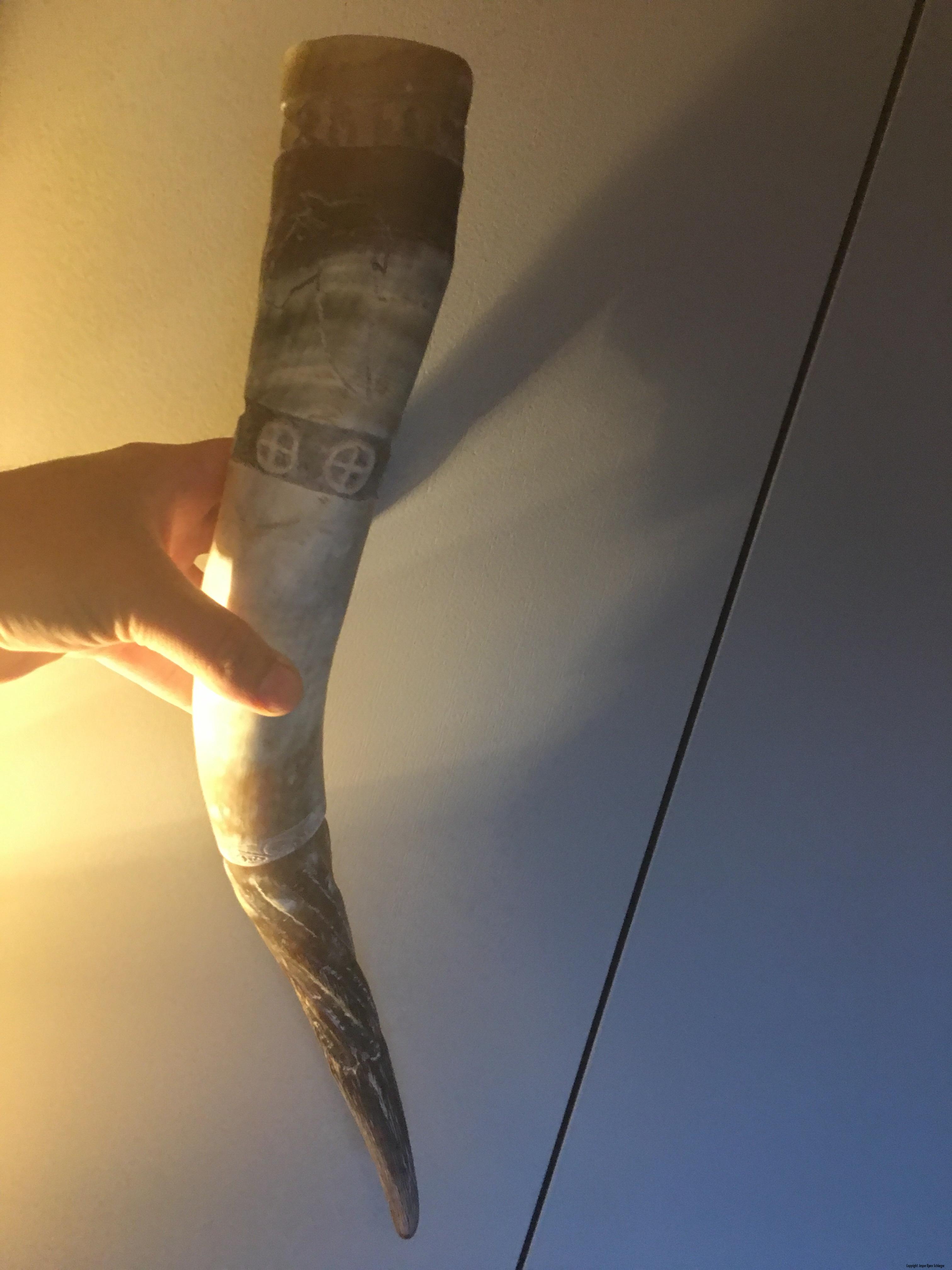 Friggas horn inden maling. Et fint, slankt og feminint horn, hvis lyse toner passer perfekt på min datter Frigga